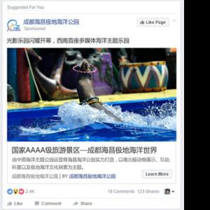 iStarto百客聚-旅游业成功案例001