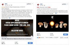 iStarto百客聚IMMC社媒运营成功案例-facebook贴文广告